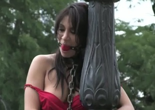 Sultry darling has connected with endure a kinky public punishment