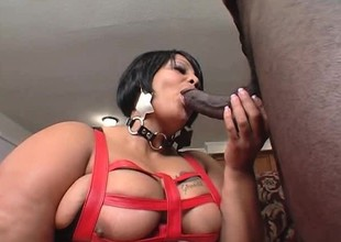 Farrah Foxx is a heavy weight black broad with a close-fisted juicy cunt
