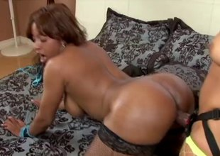 Big ass lesbians fucking hardcore with a light into b berate on dildo