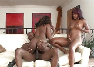 Twosome black beauties banged wide of a monster
