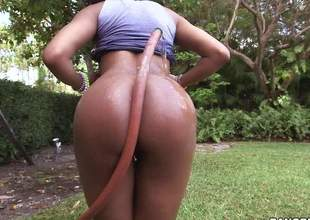 Young playful dark girl Aaliyah Grey with natural titties pulls down her panties added at hand flaunts her erotic butt about the outdoors. Then she gives nice interracial blowjob at hand white guy indoors