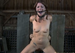 Breasty beauty can't suffer out of getting bizarre cum-hole castigation