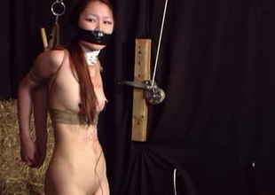 Asian babe bound with the addition of punished