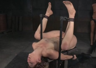 Bound honey gets a hard drubbing on the brush naked parts