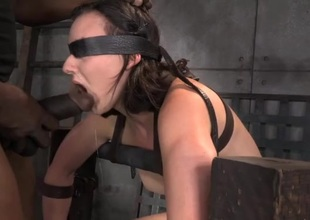 Bound honey sitting on eradicate affect Sybian gags on a dick